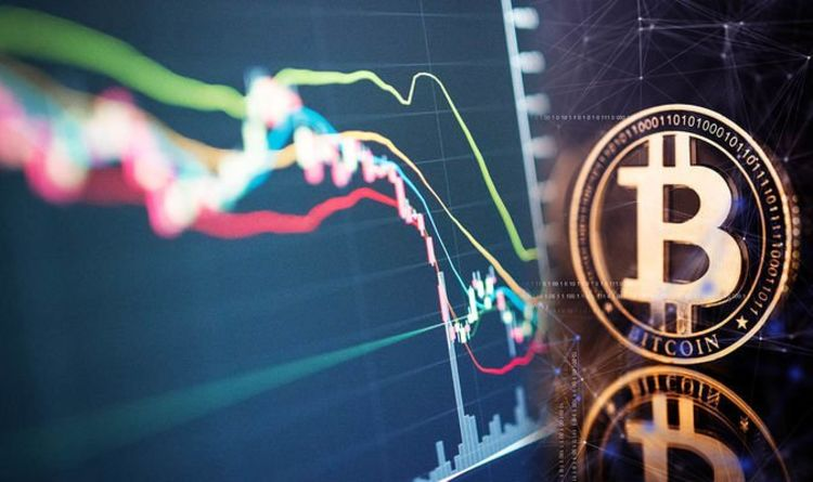 Bitcoin's price crash caused by ESG movement, says Ark's Cathie Wood